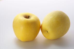 リンゴ (はるか)の写真素材 [FYI01616220]