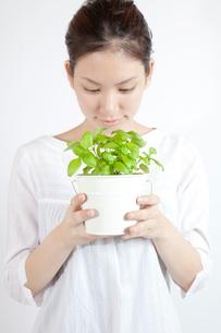 ハーブの鉢植えを愛でる女性の写真素材 [FYI01616273]