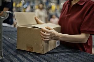 ボックスを包装している女性の手の写真素材 [FYI01617004]