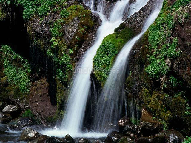 二筋の滝の写真素材 [FYI01617246]