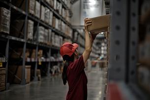 物流倉庫で商品のボックスをまとめている女性の写真素材 [FYI01617280]