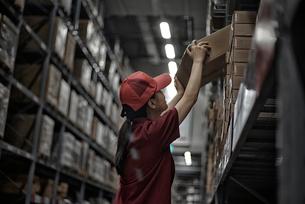 商品のボックスをまとめている女性の写真素材 [FYI01617390]