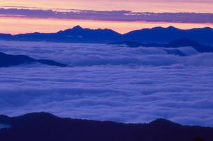 乗鞍岳より黎明の雲海を望むの写真素材 [FYI01617456]