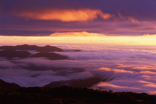 乗鞍岳より朝焼けの雲海を望むの写真素材 [FYI01617458]