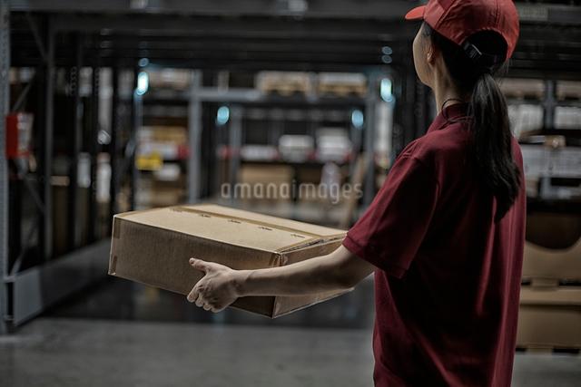 商品ボックスを持っている女性の写真素材 [FYI01617463]
