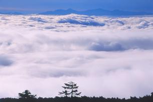 乗鞍岳より白銀の雲海を望むの写真素材 [FYI01617804]