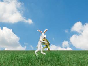 相撲を取るウサギとカエルのイラスト素材 [FYI01617995]