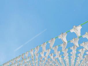 物干竿に干されて風になびく大量のポロシャツのイラスト素材 [FYI01618172]