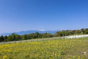 草原と南アルプスの写真素材 [FYI01619079]