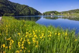 中綱湖の写真素材 [FYI01619217]