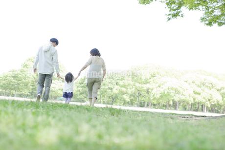公園で手を繋いで歩く3人家族の写真素材 [FYI01619626]