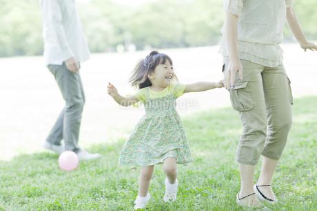家族と追いかけっこする女の子の写真素材 [FYI01619689]