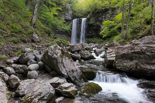 夫婦滝の写真素材 [FYI01619700]
