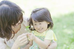 母親から野花を受け取る笑顔の女の子の写真素材 [FYI01619823]