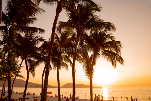 パトンビーチの写真素材 [FYI01619969]