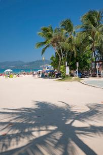 パトンビーチの写真素材 [FYI01620055]