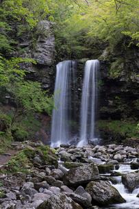 夫婦滝の写真素材 [FYI01620083]