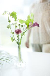 リビングに生けられた花と中高年女性の写真素材 [FYI01620139]