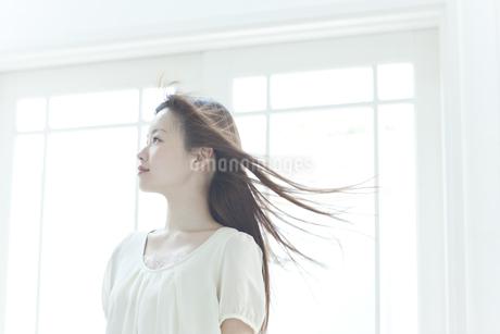 髪をなびかせる若い日本人女性の横顔の写真素材 [FYI01620155]