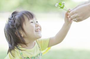 母親から野花を受け取る笑顔の女の子の写真素材 [FYI01620228]