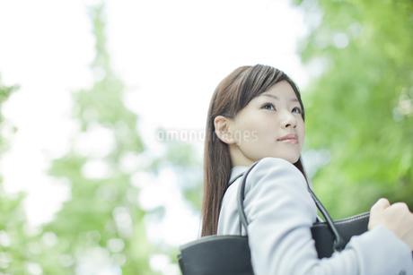 並木道で振り向くビジネスウーマンの写真素材 [FYI01620279]