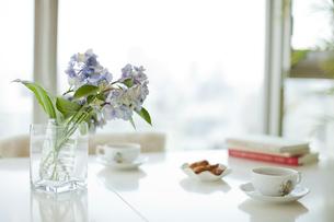 リビングに生けられた花と紅茶の写真素材 [FYI01620440]