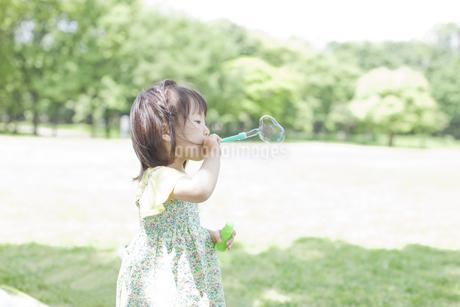 シャボン玉遊びをする女の子の写真素材 [FYI01620479]