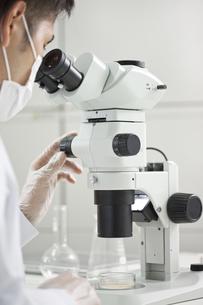 顕微鏡を覗く男性研究者の写真素材 [FYI01620486]
