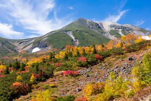 秋の乗鞍の写真素材 [FYI01620501]
