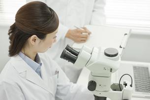 研究室で話す男女の研究者の写真素材 [FYI01620547]