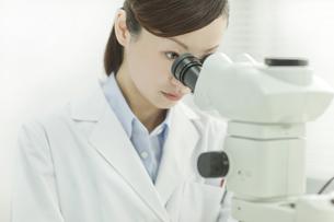 顕微鏡を覗く日本人女性研究者の写真素材 [FYI01620597]