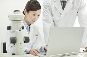 研究室でパソコンを覗き込む男女の研究者の写真素材 [FYI01620673]