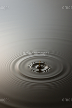 黒酢イメージの写真素材 [FYI01621166]