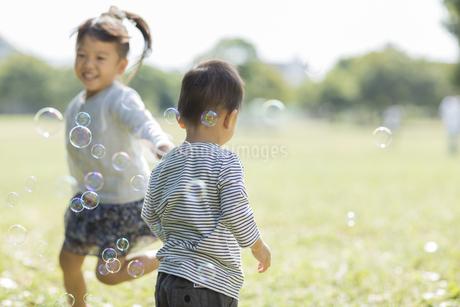 シャボン玉の中ではしゃぐ女の子と男の子の写真素材 [FYI01621349]