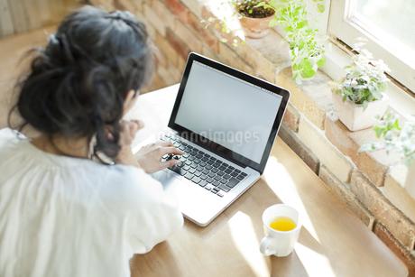 パソコンを閲覧する若い女性の写真素材 [FYI01621361]
