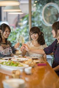 女子会で乾杯をする若い女性の写真素材 [FYI01621503]