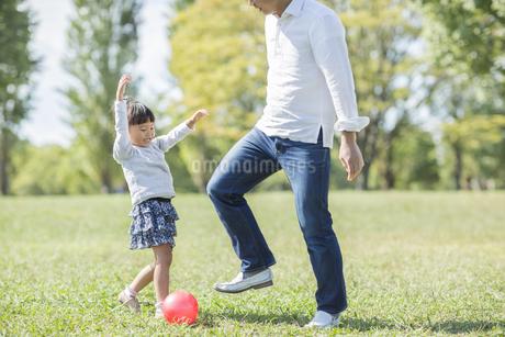 ボールで遊ぶ女の子と父親の写真素材 [FYI01621505]