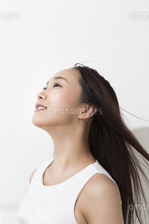 日差しを浴びる女性の写真素材 [FYI01621603]