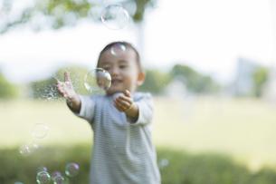 シャボン玉を捕まえようとする男の子の写真素材 [FYI01621607]