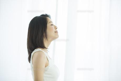 若い女性の美容イメージの写真素材 [FYI01621722]