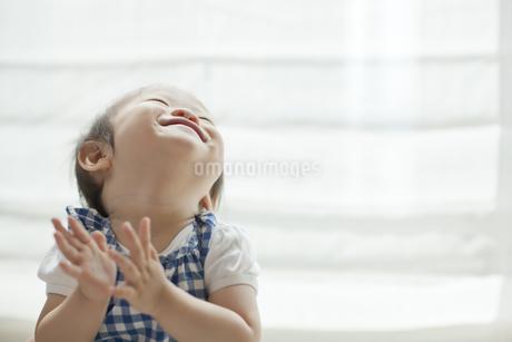 上を向いて笑う赤ちゃんの写真素材 [FYI01621748]