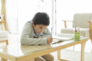 勉強をする男の子の写真素材 [FYI01621843]