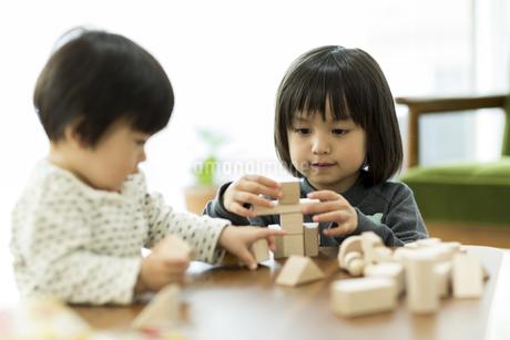 積み木で遊ぶ女の子の写真素材 [FYI01622115]