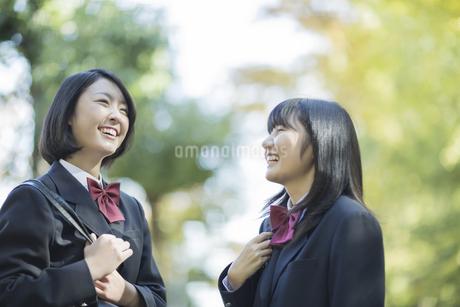 笑顔で会話をする女子高校生の写真素材 [FYI01622117]