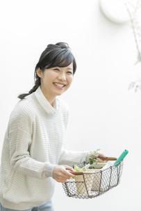 ガーデニングをする若い女性の写真素材 [FYI01622201]