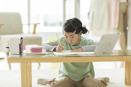 勉強をする女の子の写真素材 [FYI01622266]