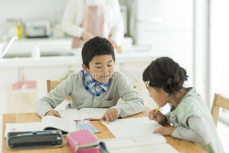 テーブルで勉強をする兄と妹の写真素材 [FYI01622296]