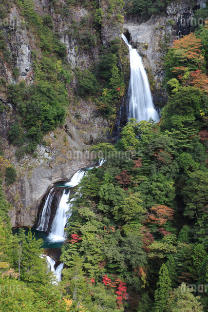 不動七重滝の写真素材 [FYI01622349]