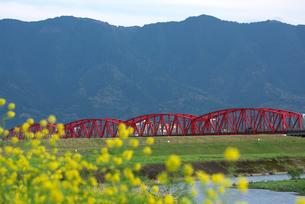 耳納連山を背景に筑後川橋の写真素材 [FYI01622354]