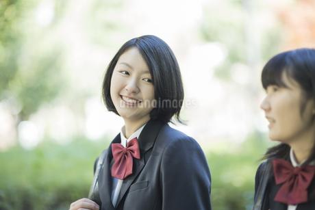 笑顔で通学をする女子高校生の写真素材 [FYI01622465]